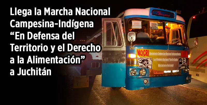 Arriba a Oaxaca, Caravana Campesina e Indígena; marcharán del IEEPO al zócalo